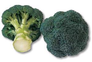 broccoli monaco